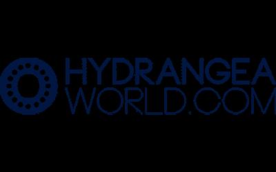 partner-hydrangea